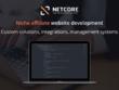 Niche affiliate website development consultation