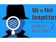 Spy On Your Competitor Sites And Give Full Seo Analysis