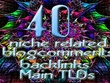 40 Niche related blog comments backlinks