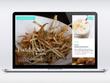 Design & develop responsive, fast & SEO friendly Webflow website