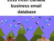 2018 fresh Canada 2,20,000 business email database