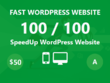 SpeedUp Wordpress Website to Rank Higher in Google