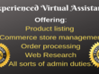 Be your pro virtual admin assistant for 1 hr
