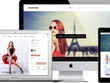 Design Responsive SEO Frndly Shopify Website With premium design
