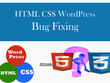 Bug fixing and theme customization of wordpress