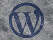 Fix any wordress problem