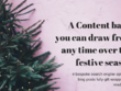 Provide 4 x bespoke SEO Blog Posts (48 HOUR FESTIVE SALE)