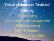 Be your Virtual eCommerce Admin assistant for 1 hr