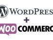Wordpress Website1hour of updates/fixes/ customization