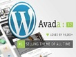 Create and customize your WP website with Avada or Divi theme