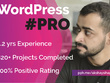 Create a professional wordpress website
