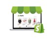 Provide 1 hour customization to shopify website / theme