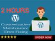 2 hours of WordPress customization, maintenance & error fixing