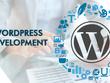 Wordpress Website Develop