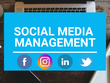 Be your Social Media Manager or Content Manager for a Month