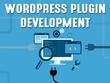 Develop custom WordPress plugin
