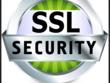 Install or repair SSL Certificate (secure sockets layer)