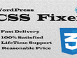 Fix WordPress CSS Issues within 6 hours
