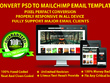 Convert PSD to Mailchimp Email Template Fully Editable.