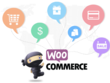 Customization and Solve Problem Your Wordpress And Woocommerce