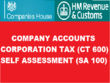 Prepare and submit Ltd Company Accounts for £90