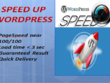Speed up wordpress and woocommerce in 24hrs a90 plus