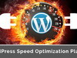 Do Speed Optimization Of Your Wordpress Website