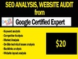 Seo analysis, website audit & Custom SEO Solutions  for leads