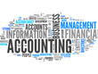 Provide financial and management accounting services