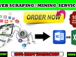 Do Data Scraping/data mining/crawling from any website/directory