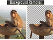 Remove background from your 20 photos