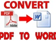 Convert 30 pages PDF to word or image text