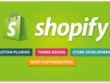 Design A Professional Shopify Store