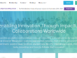 Develop your wordpress, squarespace , symfony & admin panel