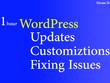 Provide 1 Hour of WordPress Updates / Fixes / Customization
