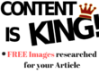 Write 1000 words SEO optimized Article/blog with images in 24 h