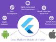 Build cross platform hybrid mobile application with FLUTTER