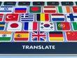 Perfectly translate 4000 words in 24 hours