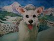 Make a portrait of your pet