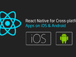 Create Hybrid Application in REACT