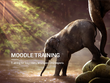 Moodle Online Training- Course Creator & Administrator