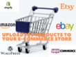 Upload 100  Products Manually To Your E-commerce Store