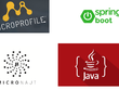 Develop Java applications using Spring Boot, Micronaut, Java EE