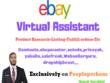Do Virtual Assistant For ebay 2 hour