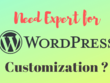 Bug fixing or Customizing existing Wordpress website