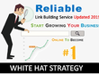 Reliable Link Building Service To Improve Website Ranking