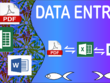 Do All type DATA entry 60 page