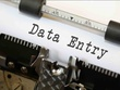 Provide Data Entry Work of 500 Entries.