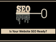 SEO Ready Website - Domain, Content & Backlink Analysis, More..