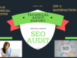 Provide SEO audit report,competitor website ranking report